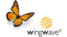 Wingwave-Coaching_Instituto-Aware